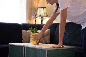 regular housekeeping services Wanstead